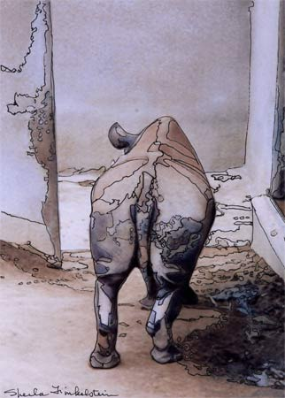 rhino's butt photo/drawing on photography and transformation blog