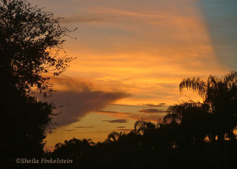 last of the sunset in Boynton Beach, FL neighborhood - 8/24/08