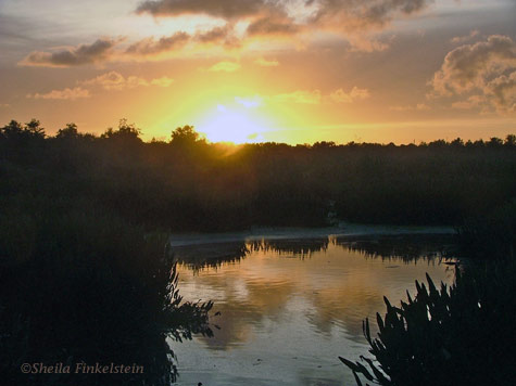 Sunset in Green Cay Wetlands